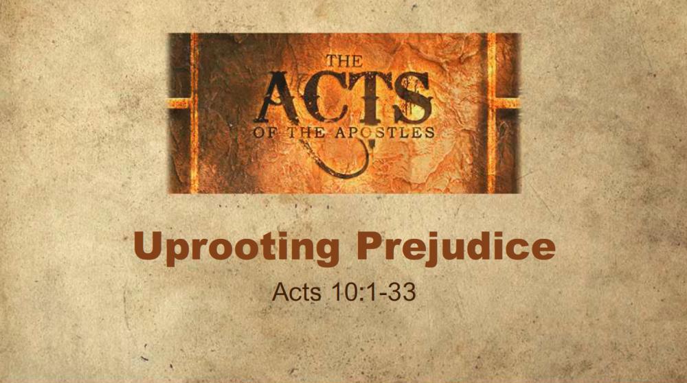 Uprooting Prejudice